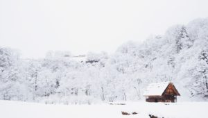 A snowy escape - the best accommodation to enjoy the snow